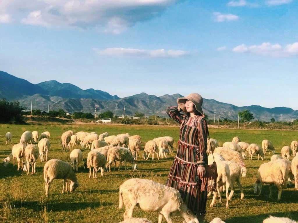 Đồi con Cừu Vũng Tàu