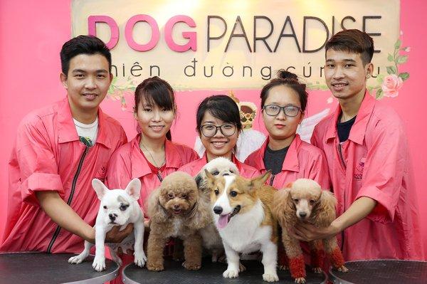 Thiên đường chăm sóc thú cưng Dog Paradise