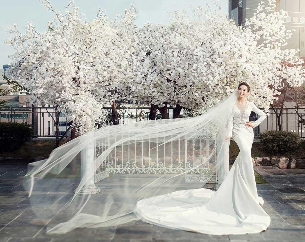 Váy cưới đuôi cá dài phong cách Hàn Quốc