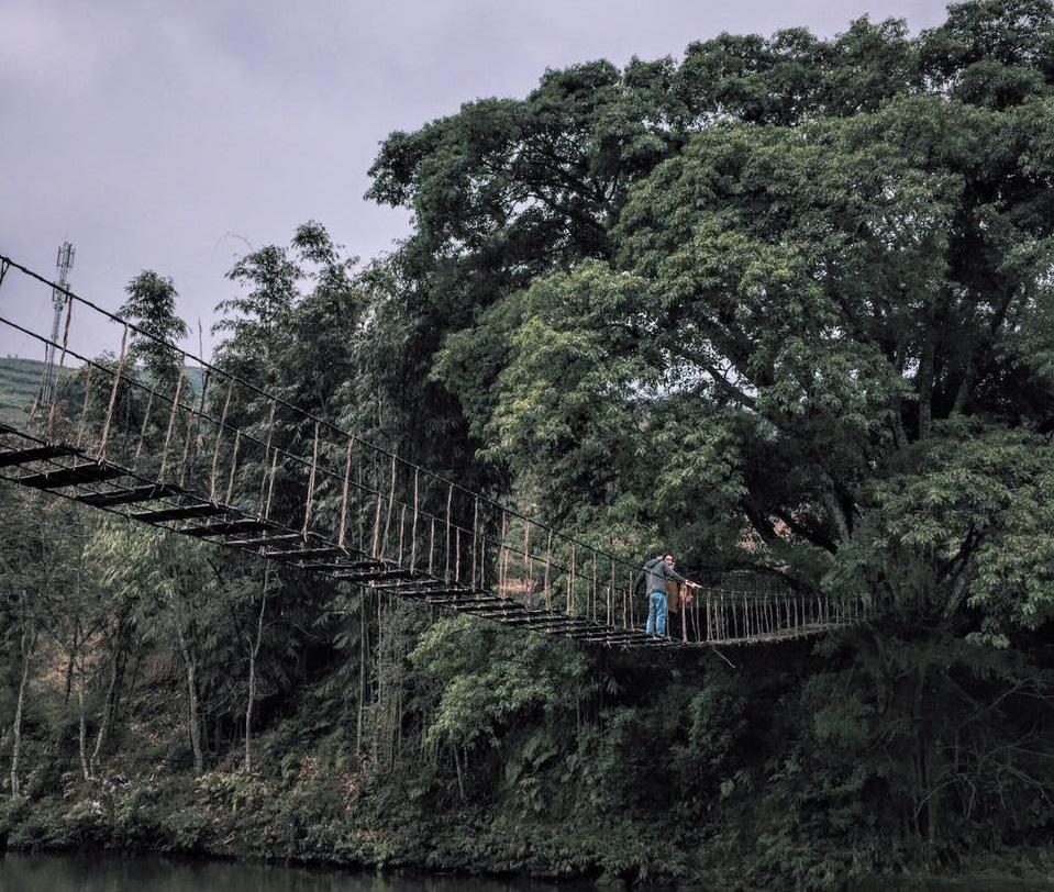 Cầu Mây Sapa mang vẻ đẹp huyền bí và đầy thử thách