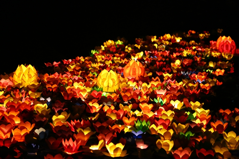 Vào ngày tết nguyên tiêu, mọi người thường thả đèn hoa đăng để cầu nguyện