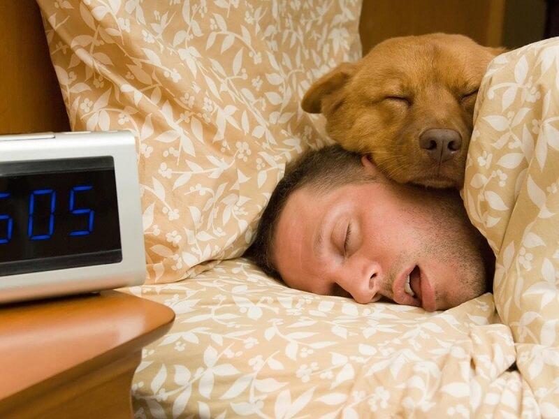 Ngủ nướng cuối tuần gây ra nhiều tác dụng xấu, gây lãng phí thời gian.