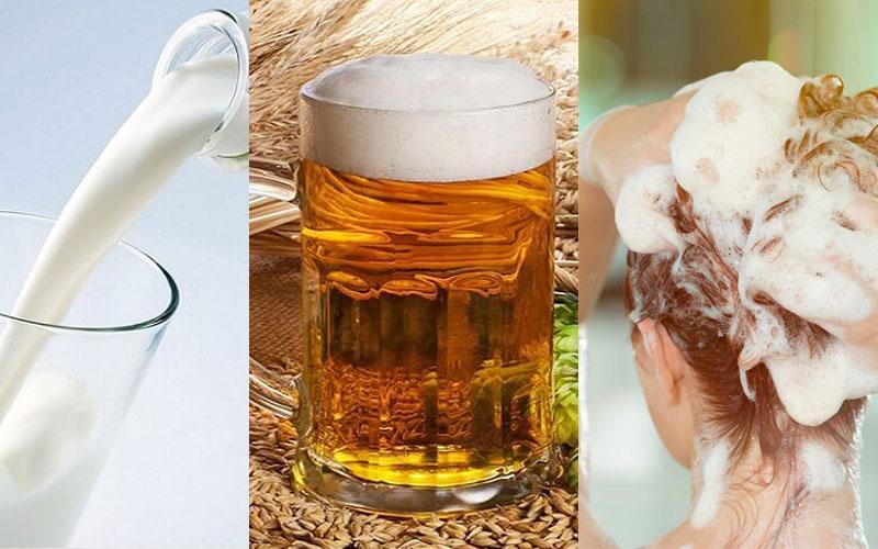 Gội đầu bằng bia giúp tóc nhanh dài và giảm hư tổn