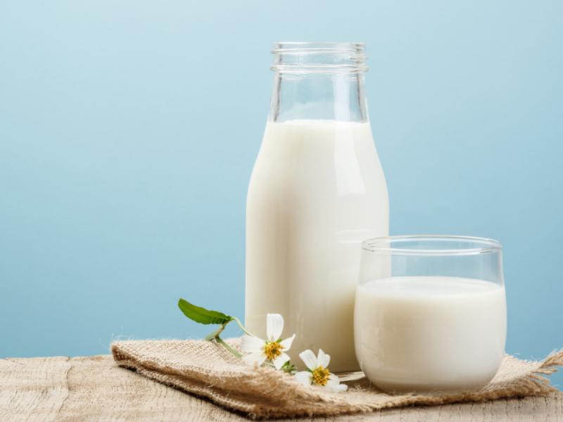 Sữa tươi chứa nhiều canxi giúp tăng trưởng chiều cao