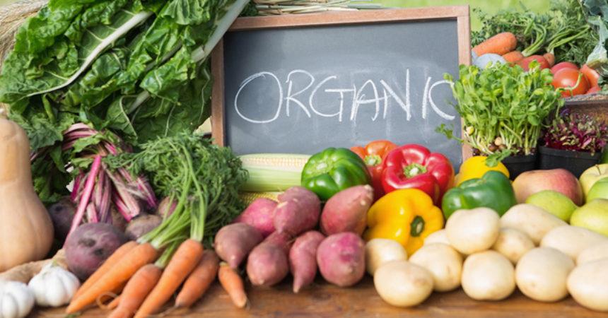 Thực phẩm hữu cơ được nhiều người sử dụng