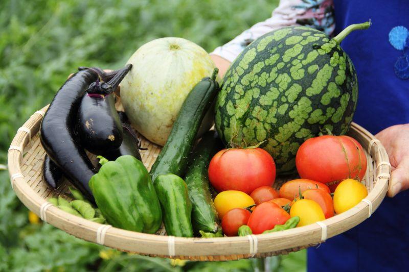 Thực phẩm hữu cơ tốt hơn cho sức khỏe