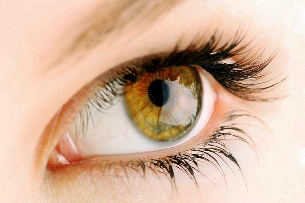Tròng mắt màu vàng khác lạ