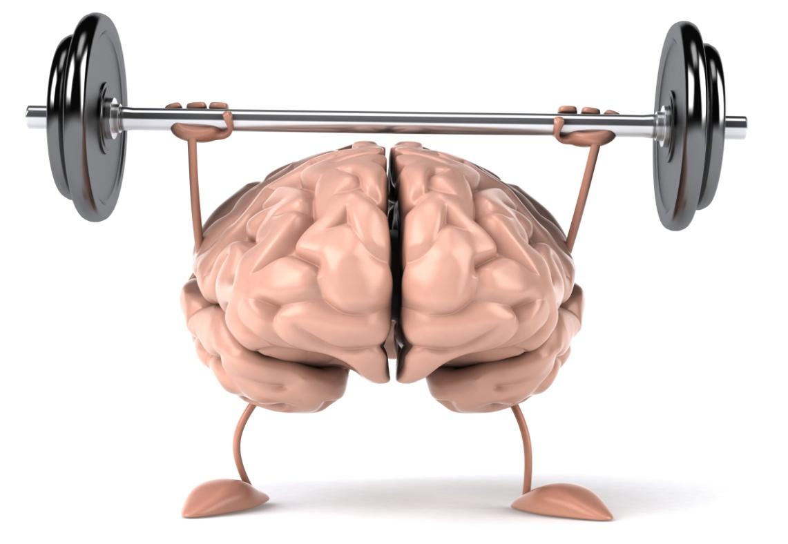 Những dưỡng chất giúp não bộ hoạt động tốt nhất ⋆ TopReview.vn