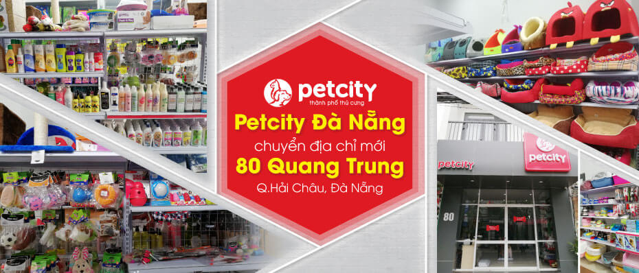 Siêu thị thú cưng Đà Nẵng Petcity