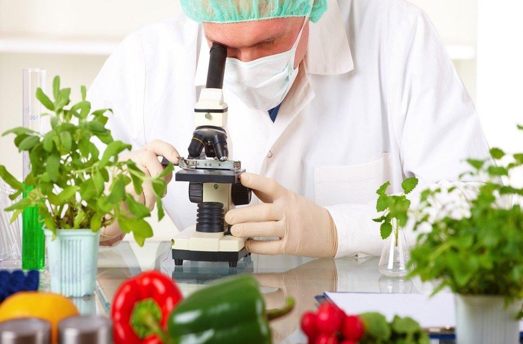 Công nghệ thực phẩm là một trong những nghề không thể thiếu trong tương lai.  - nghề hot trong tương lai