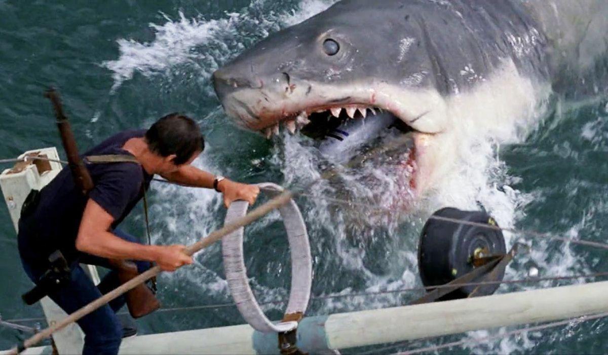 Jaws - tượng đài phim về đề tài cá mập