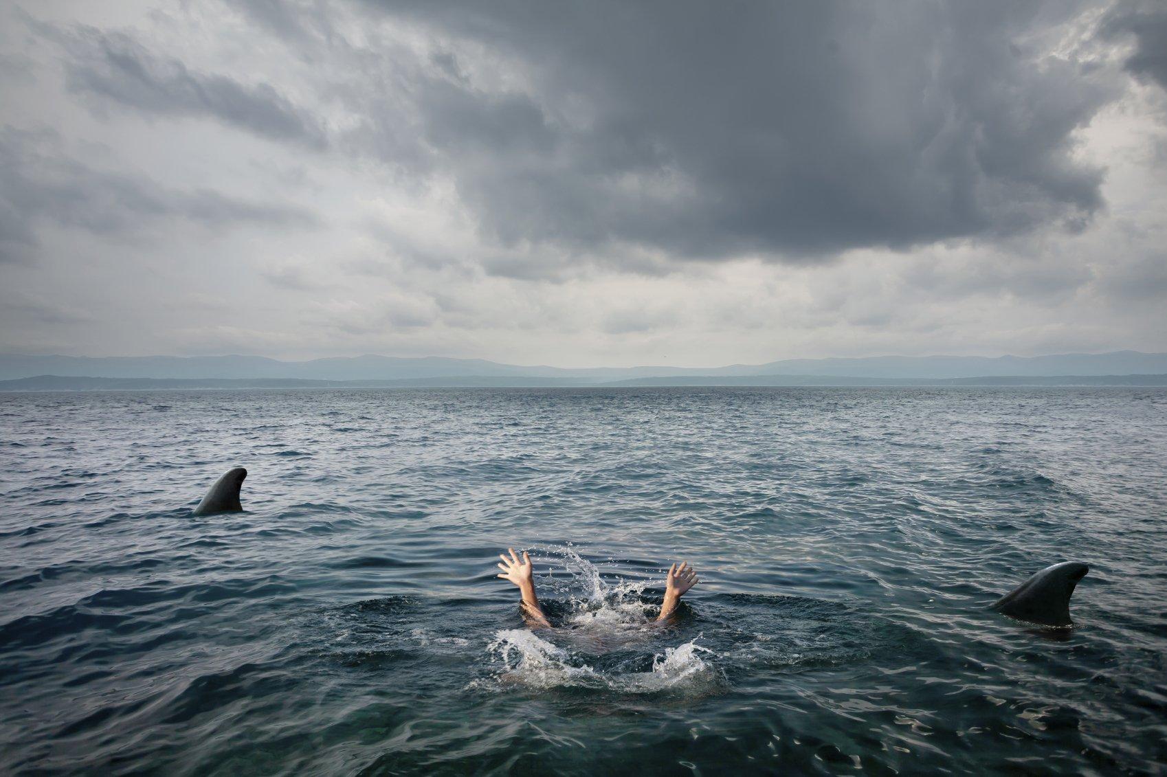 Open Water - phim về cá mập với góc nhìn khác