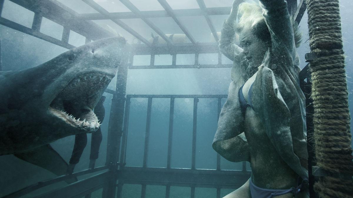 Shark Night - phim về cá mập kinh dị