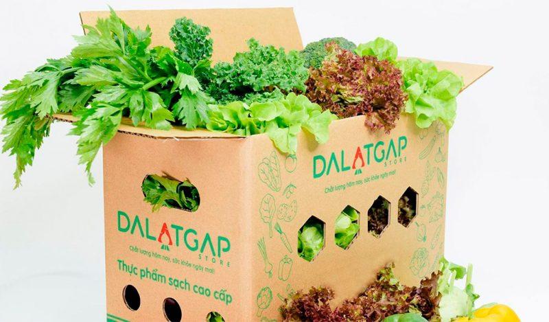 Thực phẩm tươi ngon từ Dalat Gap