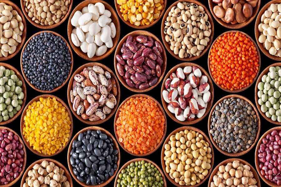 Các loại đậu là nguồn protein thực vật rất tốt cho xương khớp