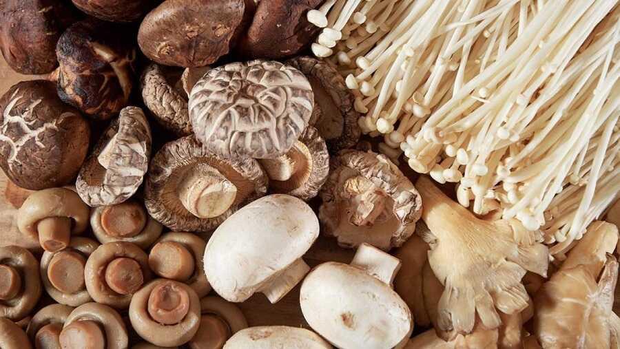 Các loại nấm một thực phẩm bổ dưỡng với cơ thể và hệ thống xương