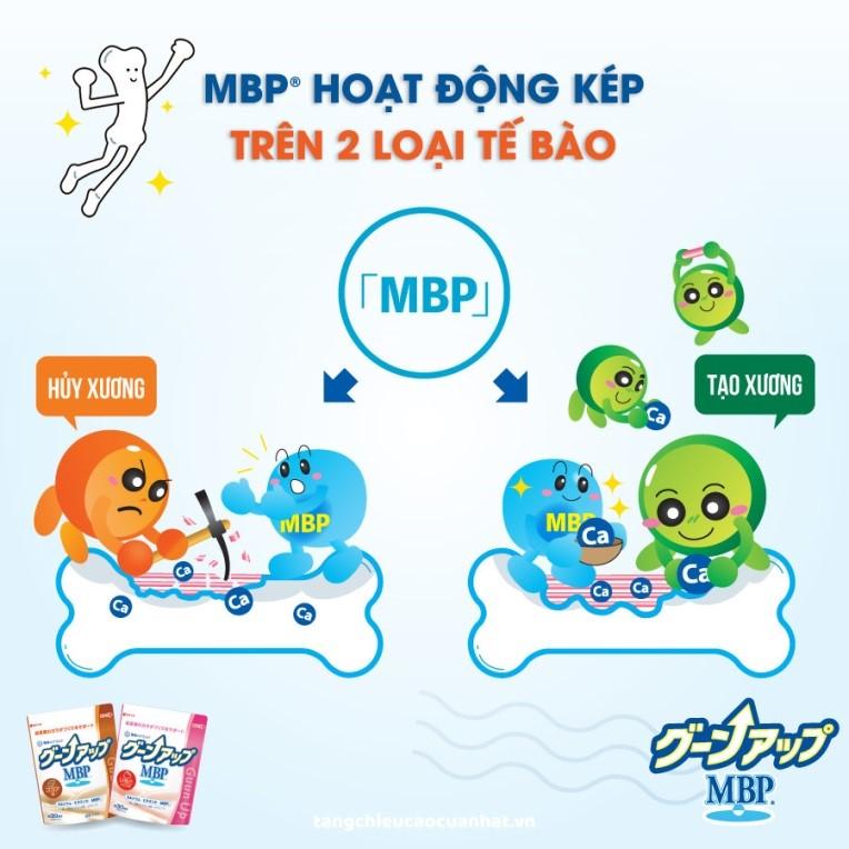 MBP® giúp tăng cường mật độ xương – tăng chiều cao vượt trội